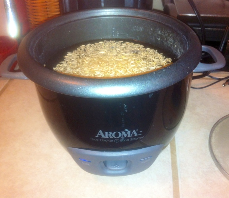 The Aroma 6-cup rice cooker is genius!