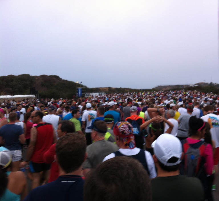 About 8,000 people ran the half marathon this year!