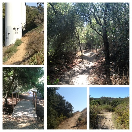 Well-kept trails, tough terrain and beautiful scenery made this so much fun.