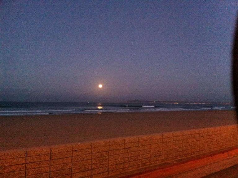 Gorgeous moon view as we boarded the bus at Silver Strand State Beach.