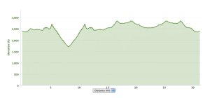 The race contains roughly 2,500 feet of elevation gain/loss