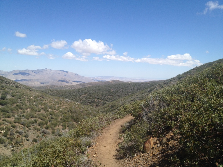 Coming back in on the PCT