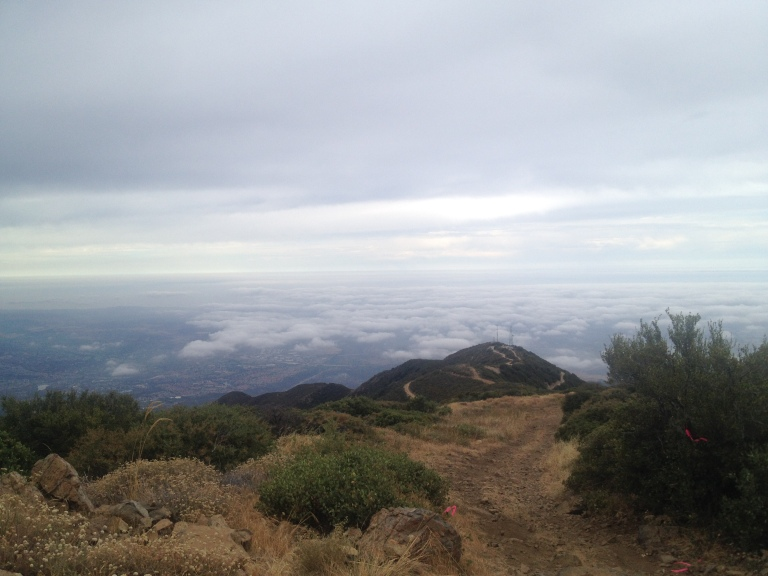 View above the clouds Harding Hustle 50K