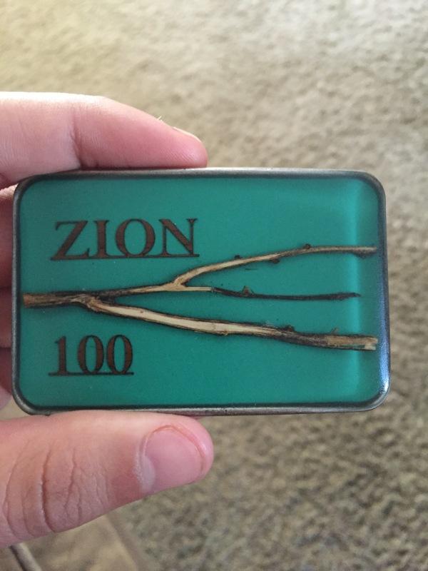 Zion 100
